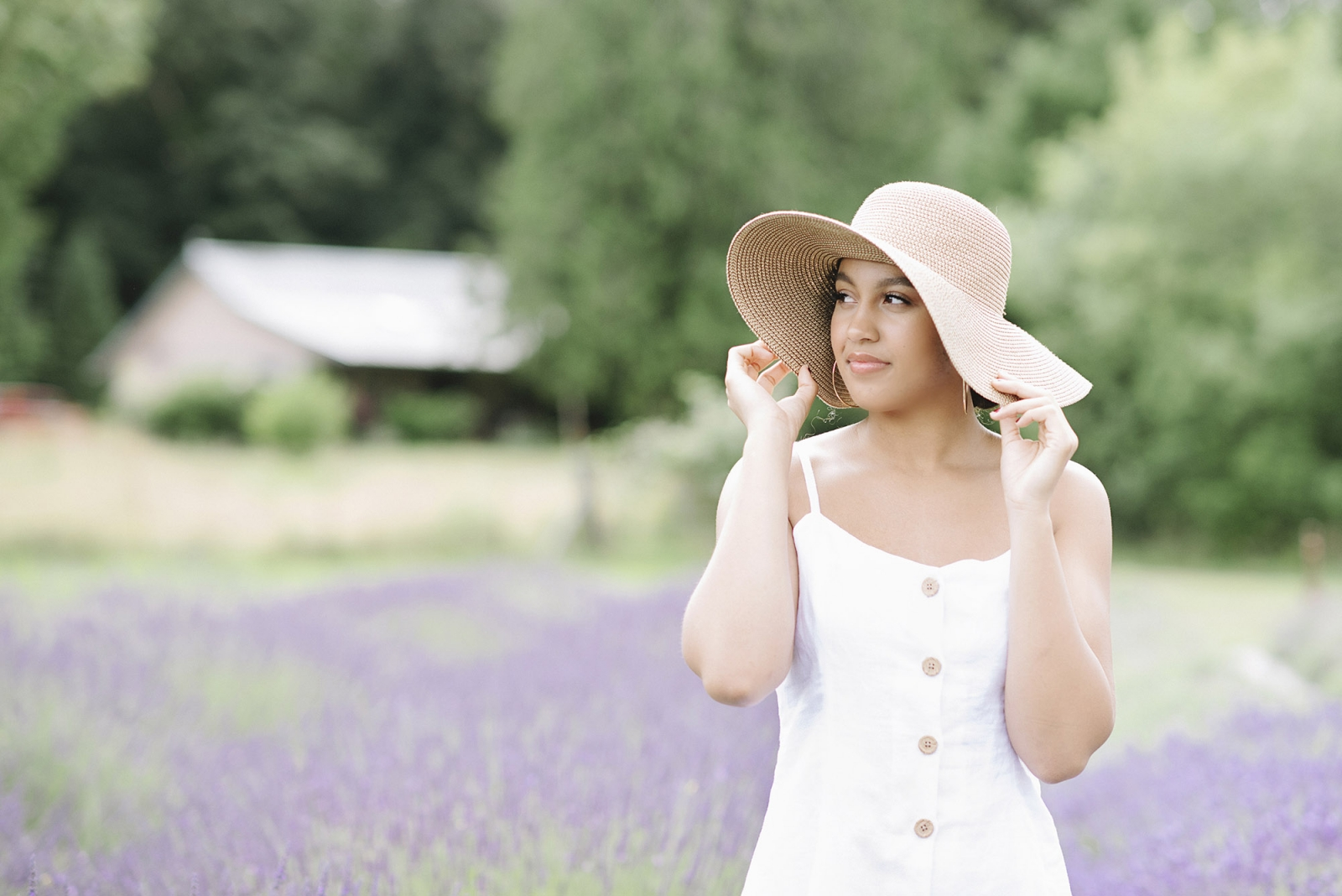 Lavender Farm Senior Portraits