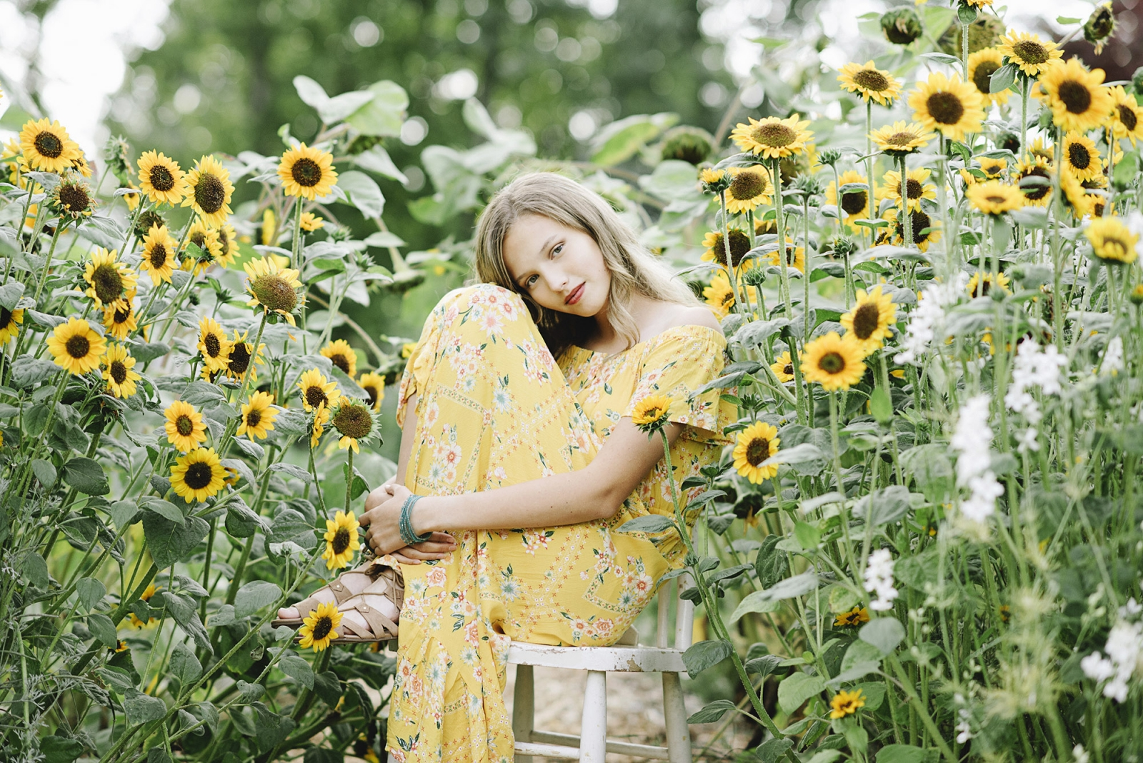 Teen Sunflower Pictures